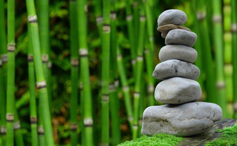 Piękny ,a także miły dla oczu ogród to zasługa wielu godzin spędzonych  w jego zaciszu w trakcie pielegnacji.